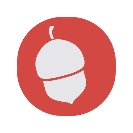 nut: acorn nut