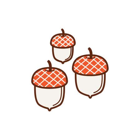 acorns: acorns Illustration
