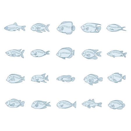 fishes: collection of fishes Illustration