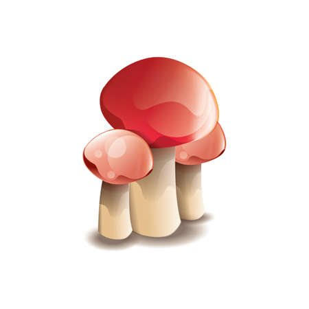 cep: mushrooms Illustration