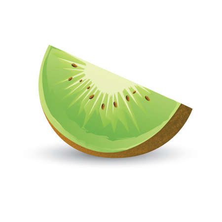 kiwi fruit: kiwi fruit slice