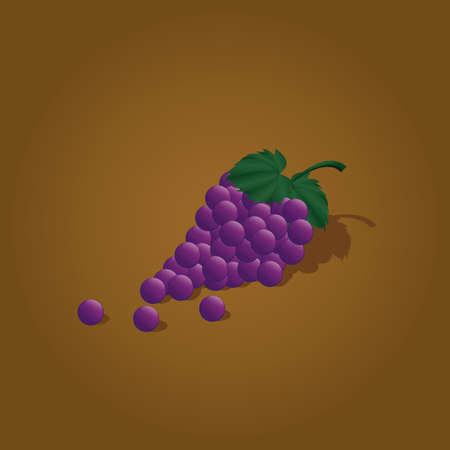 bunch: bunch of grapes