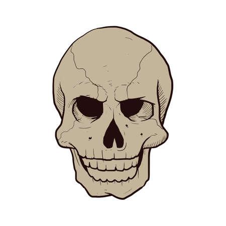 prop: halloween skull head Illustration