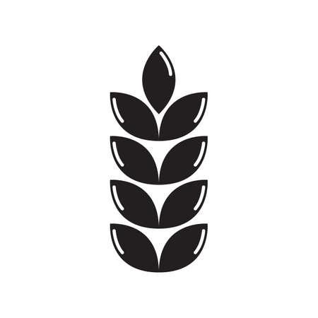 bran: grains