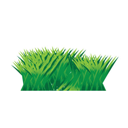 grass: grass