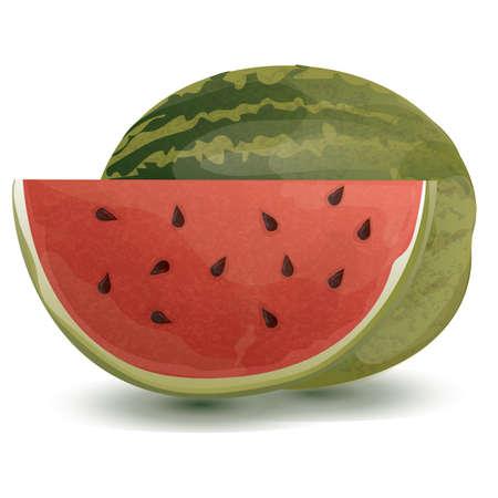 yummy: watermelon Illustration