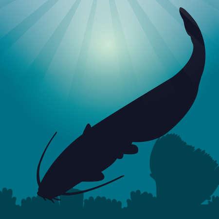 catfish: catfish silhouette