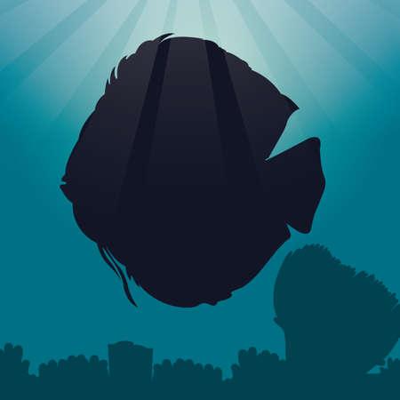 discus: discus fish silhouette