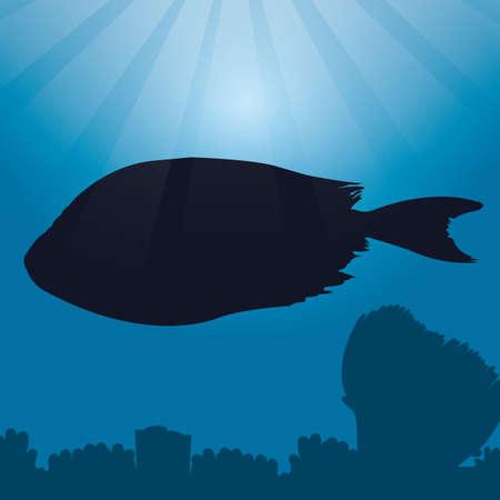 rabbitfish: rabbitfish silhouette Illustration
