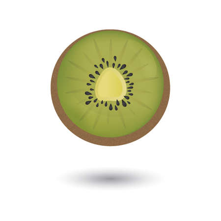 kiwi fruit: kiwi fruit Illustration