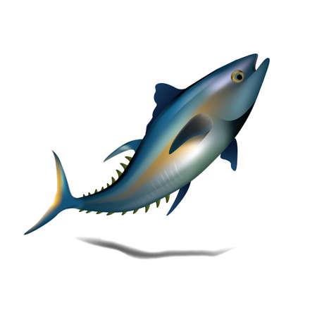 A bluefin tuna fish illustration.
