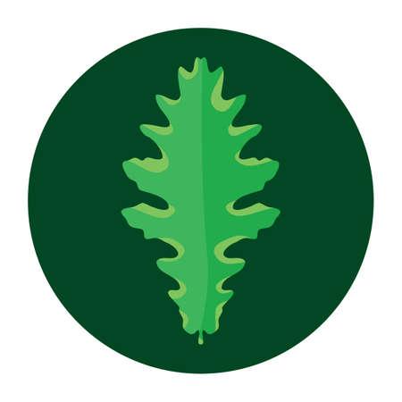 leaf  イラスト・ベクター素材