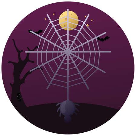 거미와 웹 일러스트