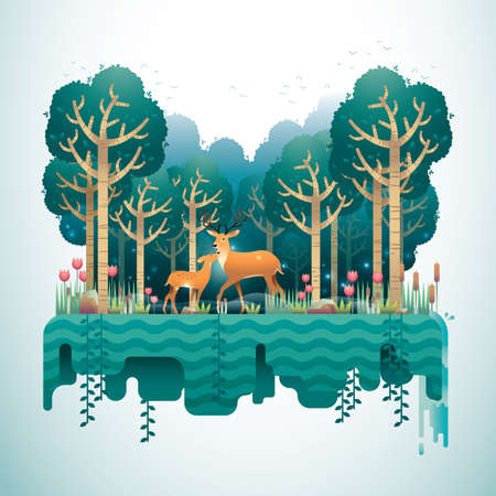 Waldlandschaft Standard-Bild - 81419309