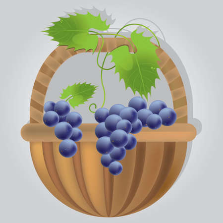 Racimo de uvas en cesta Foto de archivo - 81537222