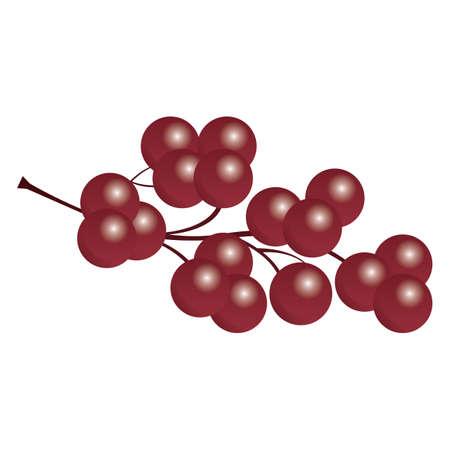赤ブドウの房  イラスト・ベクター素材