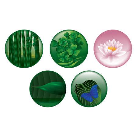 Collection nature Banque d'images - 81418939