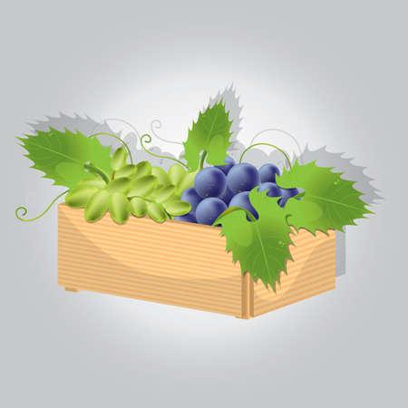 Grappolo d'uva nel paniere Archivio Fotografico - 81537672