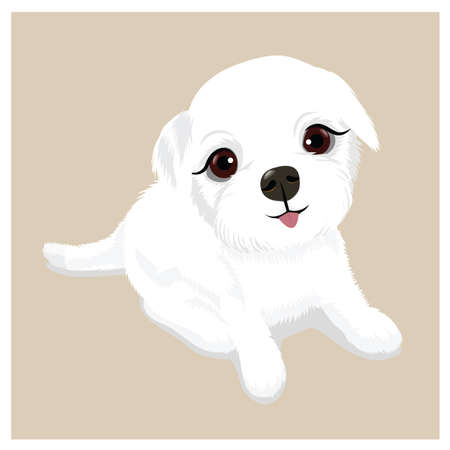 Cute puppy Stock Vector - 81537182