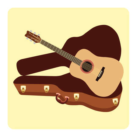 guitar with a guitar case