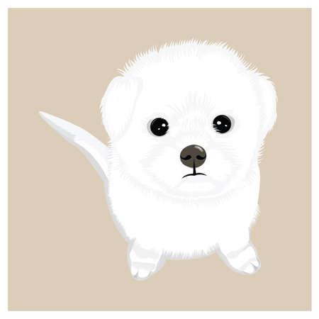Cute puppy Stock Vector - 81537263
