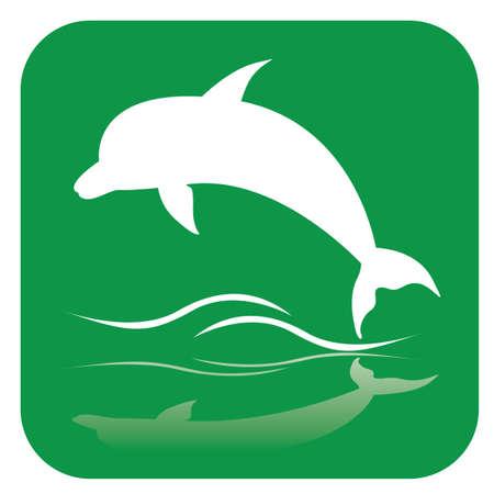 dolphin Illusztráció