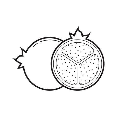 Pomegranate illustration