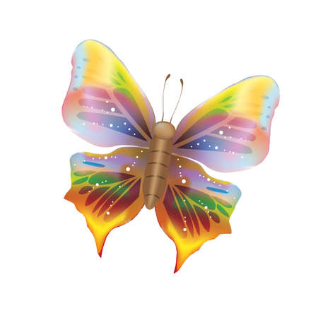 colorful butterfly Ilustrace