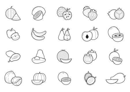Sammlung von Früchten