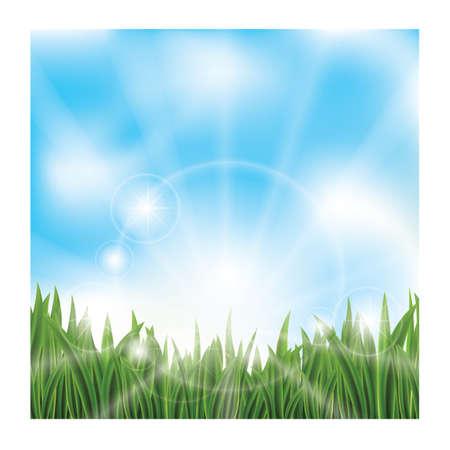 青い空と緑の芝生。