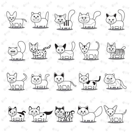 Set of cats
