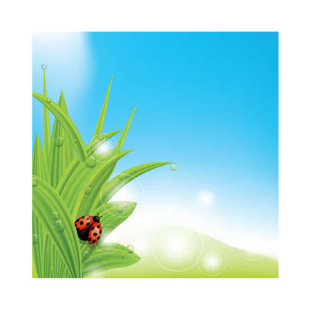 A ladybug on fresh grass illustration. Çizim