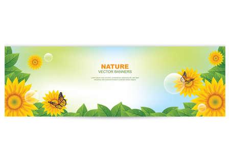 A nature banner with sunflower illustration. Illusztráció