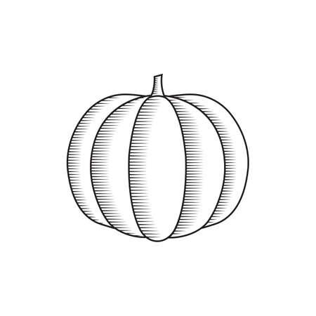 A pumpkin illustration.