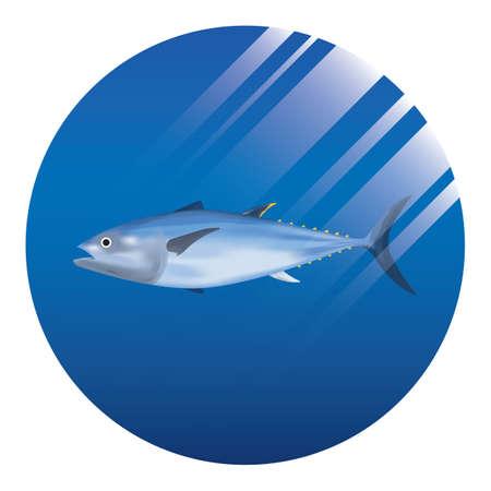 fish 版權商用圖片 - 81486923