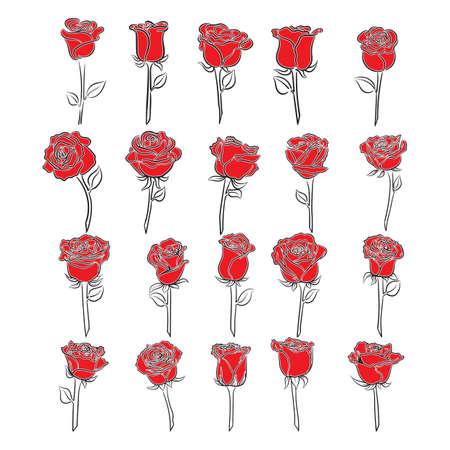 Set van roze bloemen