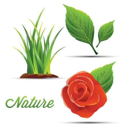 set of nature icons 向量圖像
