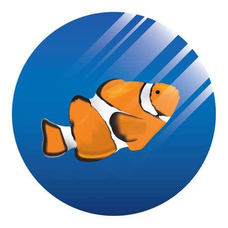 Peixe-palhaço Ilustración de vector