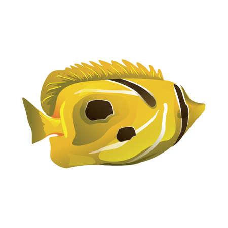 fish 版權商用圖片 - 81487039