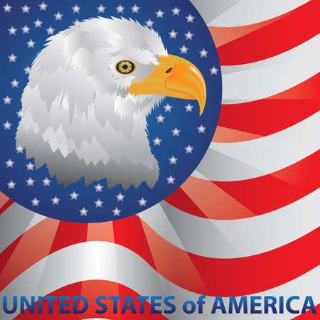 미국 국기 배경에 대머리 독수리