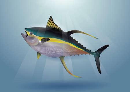 fish Reklamní fotografie - 81538420