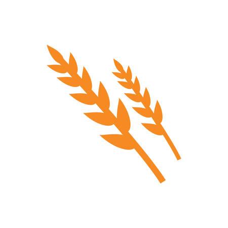 밀 곡물 일러스트