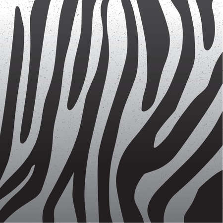 zebra skin background Çizim