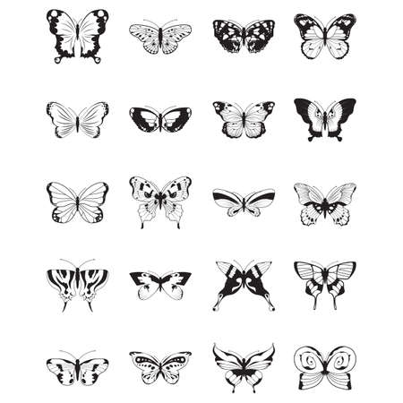 Set di icone farfalla Archivio Fotografico - 81487136