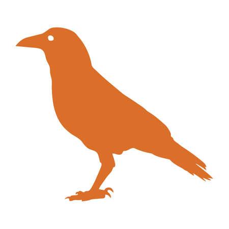 A crow illustration.
