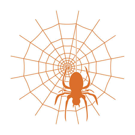 spider on the web  イラスト・ベクター素材