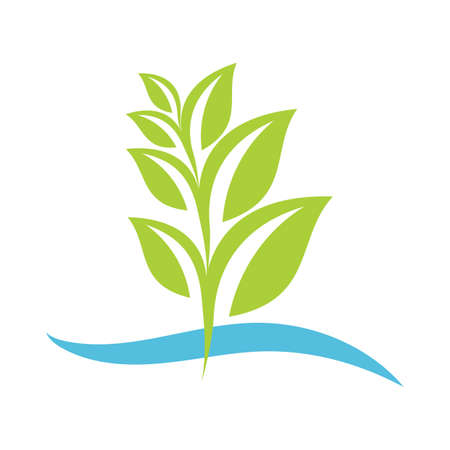 Eco pianta verde Archivio Fotografico - 81538617