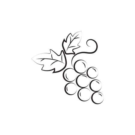 A grapes illustration.