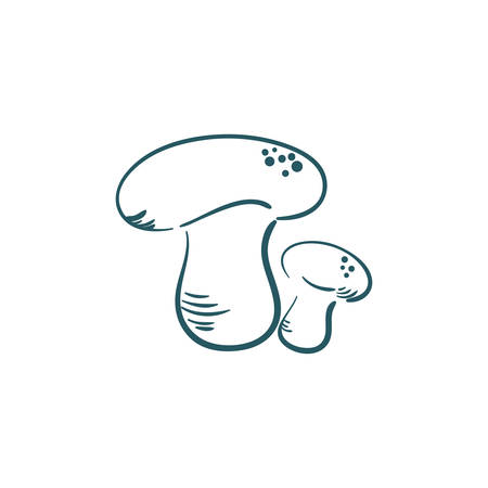 A mushrooms illustration. Çizim