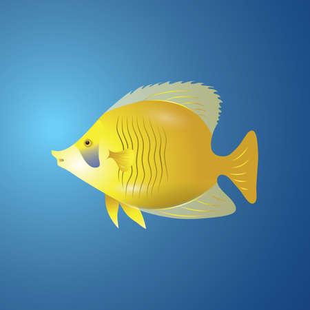 yellow tang Ilustrace